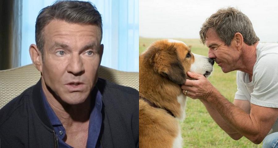 """""""Quatro Vidas de Um Cachorro"""": Dennis Quaid diz que vídeo de maus-tratos a pastor alemão foi """"manipulado"""""""