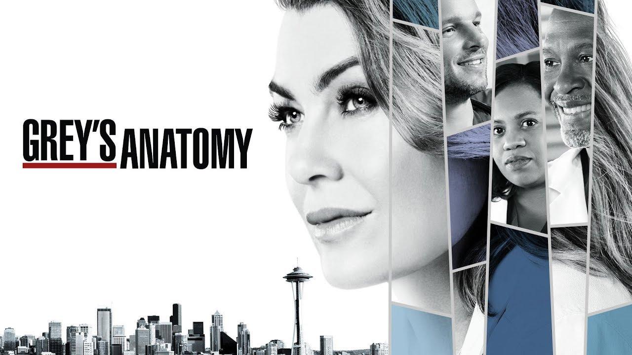 Oficial! Grey's Anatomy é renovada para a 15ª temporada; confira detalhes!
